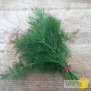 fine herbe